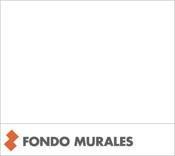 FONDO MURALES - PITTURA E/O FONDO COPRENTE TRASPIRANTE