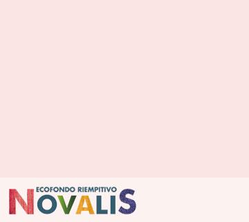 NOVALIS FONDO RIEMPITIVO – CEMENTITE CARTEGGIABILE PER LEGNO